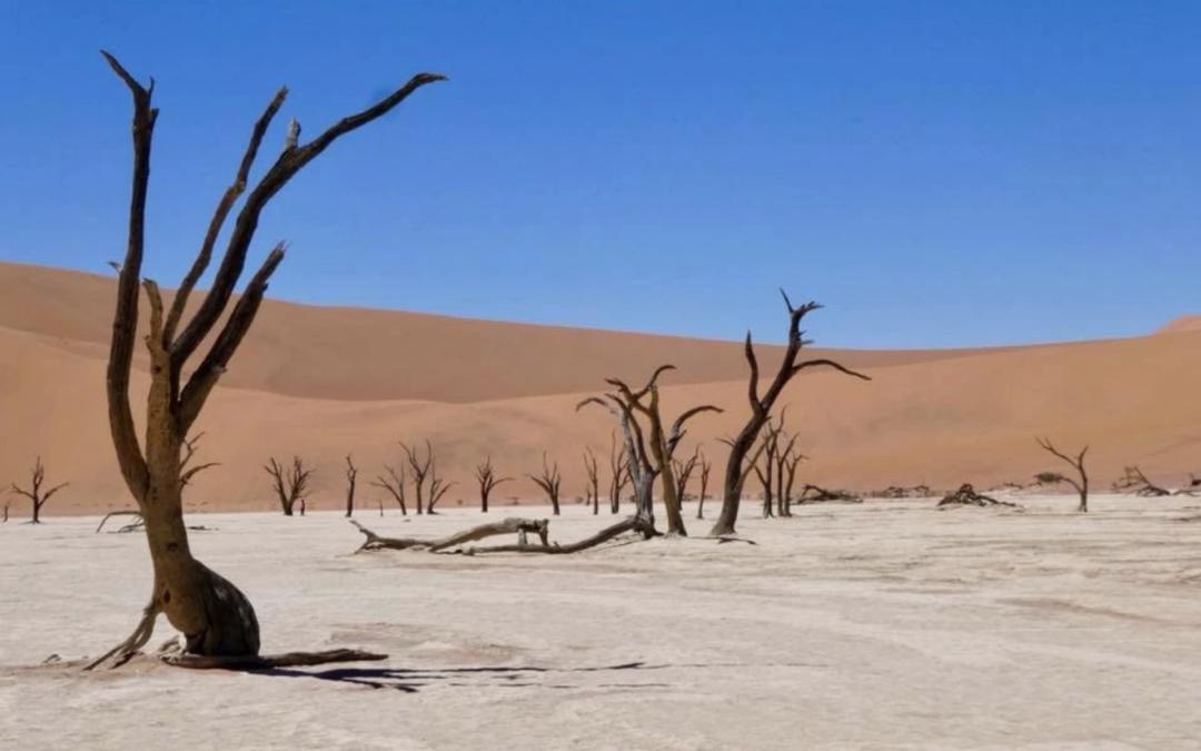 Dry-Namibia